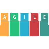 agile_slave