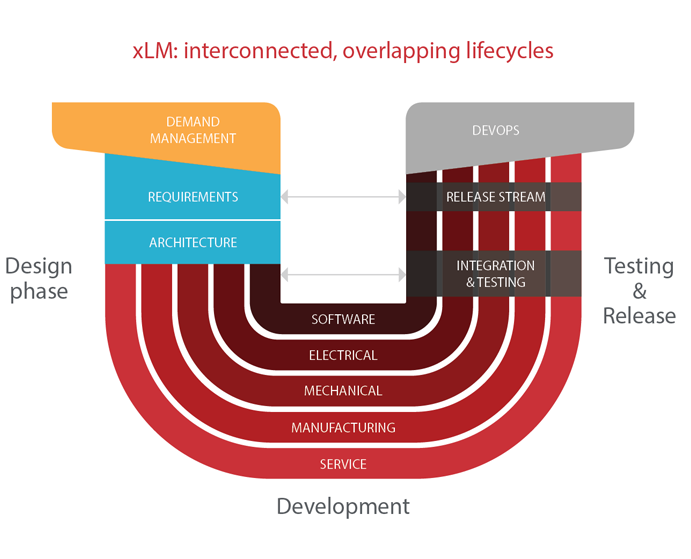 xLM: interconnected, overlapping lifecycles