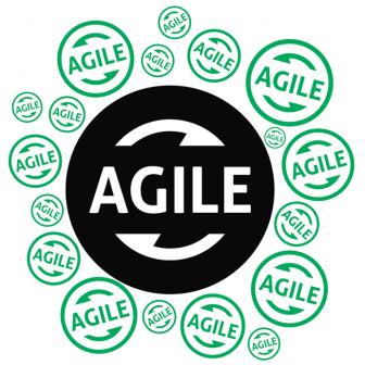 Dark Agile Manifesto: Criticism of Agile Development