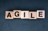 Agile Adoption by Enterprises is Ramping Up